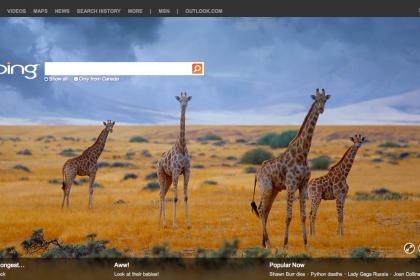 Bing ยังโกยรายได้ นั่งแท่น Search engine อันดับ 2 ใน US
